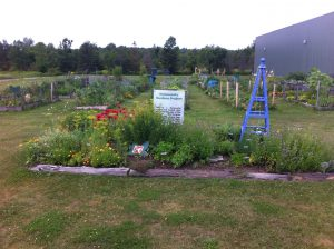 Manna's Garden