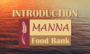 Introduction to Manna